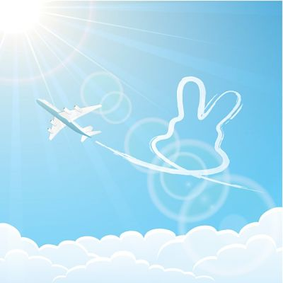 Be Prepared: Rabbit Care When Traveling by Air