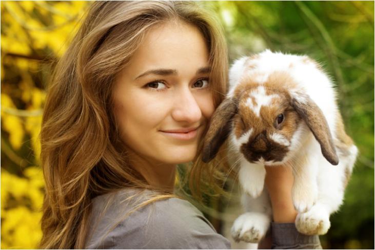 Rabbit Adoption
