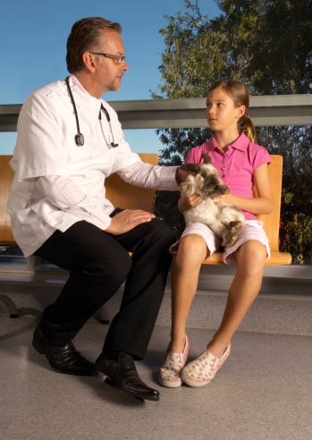 9 Questions Every Rabbit Veterinary Provider Should Answer