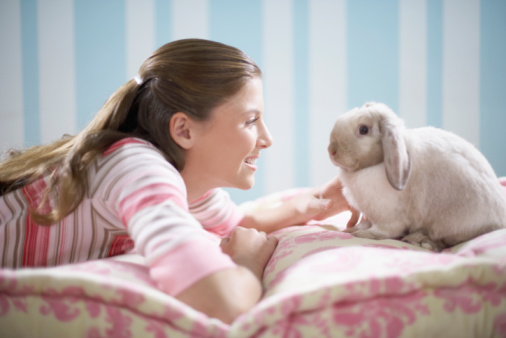 Rabbit Care Tips: Fun DIY Toy Ideas For Your Pet Rabbit